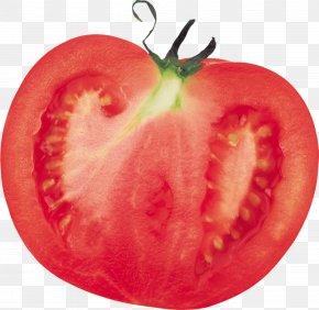 Tomato Image - Italian Cuisine Pasta Cherry Tomato Vegetable PNG