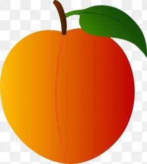 Peach - Peach Clip Art PNG