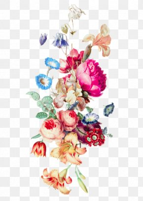 HD Flowers Of Various Colors - IPhone 6 Plus Floral Design Cut Flowers Flower Bouquet PNG