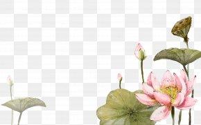 Hand Painted Full Pot Lotus - Lotus Cars China Nelumbo Nucifera 2012 Lotus Evora Watercolour Flowers PNG