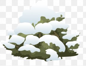 Snow - Shrub Snow Tree Clip Art PNG