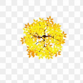 Overlooking The Golden Leaves - Leaf Tree Golden Leaves Euclidean Vector PNG