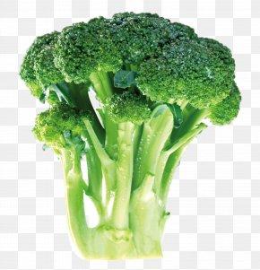 Green Cauliflower - Broccoli Vegetable Cauliflower Food Chinese Cabbage PNG