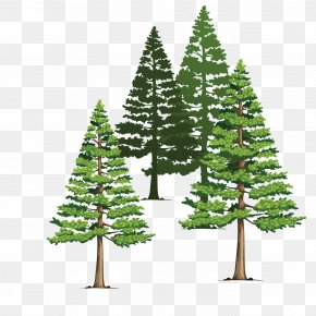 Hand-drawn Illustration Pine Scene Vector Material - Euclidean Vector Illustration PNG