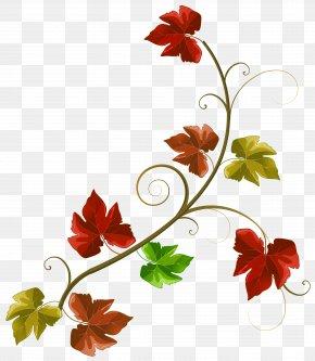 Autumn Leaves Decoration Clipart Image - Autumn Clip Art PNG