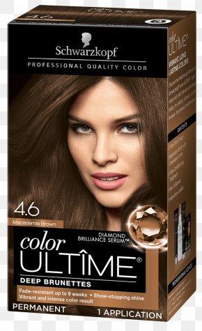 Cinnamon Hair Color - Hair Coloring Schwarzkopf Keratin Color Anti-Age Hair Human Hair Color PNG