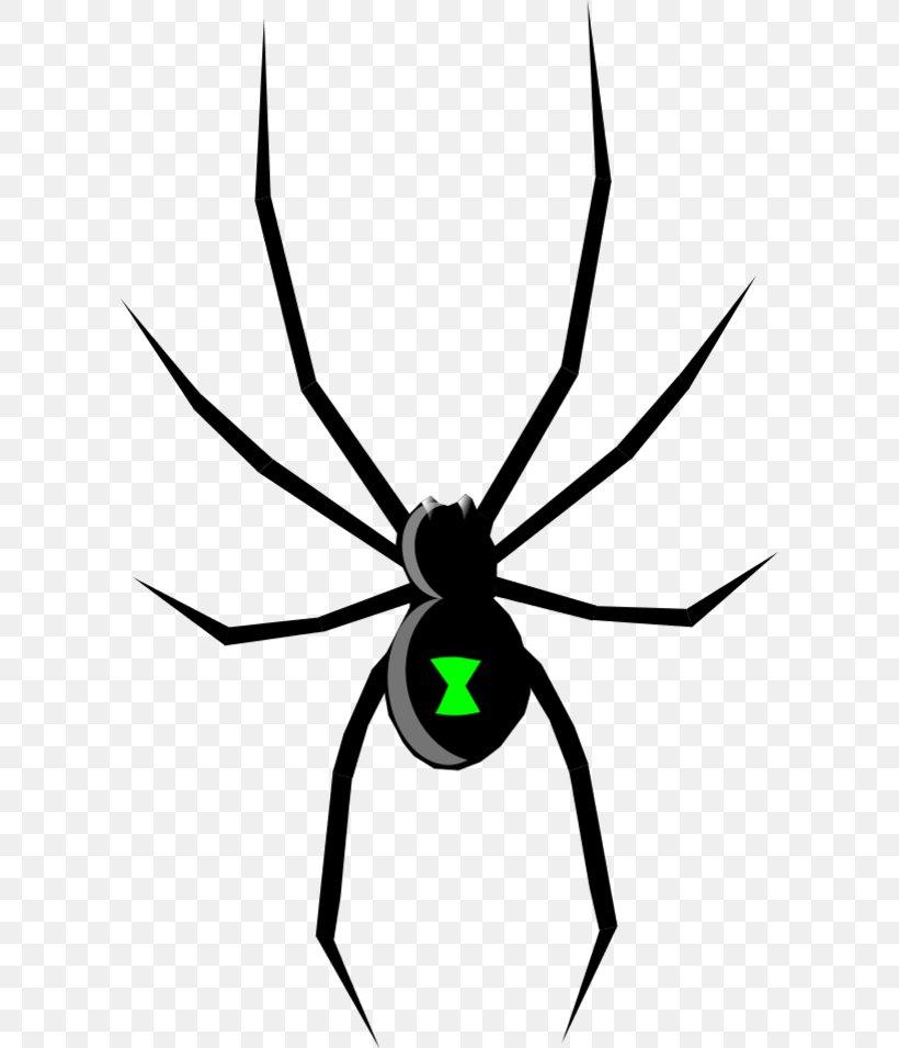 Black Widow Spider Drawing Clip Art Png 600x955px Black