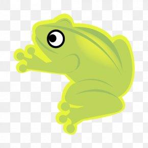 Frog Animal AI Vector - Tree Frog Adobe Illustrator Illustration PNG