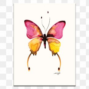 Butterfly Watercolor - Butterfly Watercolor Painting Art Canvas PNG
