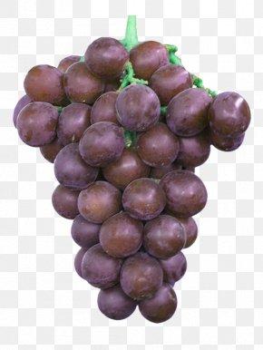 A String Of Purple Grapes - Kyoho Grape Beizhen Sugar Sweetness PNG