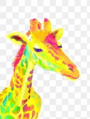 Watercolor Yellow Giraffe Head - Northern Giraffe Download IPhone 4 Wallpaper PNG