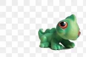 Pet Shop - Common Iguanas Littlest Pet Shop Toy PNG