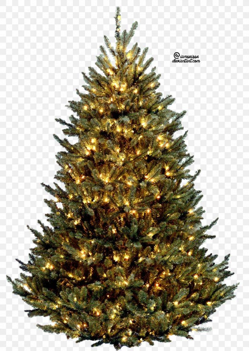 Vatican Christmas Tree Fraser Fir Artificial Christmas Tree, PNG, 980x1378px, Vatican Christmas Tree, Artificial Christmas Tree, Christmas, Christmas Decoration, Christmas Lights Download Free