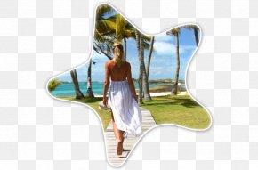 Paradise Beach - Gems At Paradise Private Beach Resort Hotel Cheap PNG