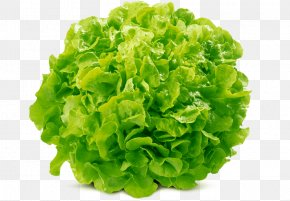 Cauliflower - Romanesco Broccoli Cauliflower Mathematics Vegetable PNG