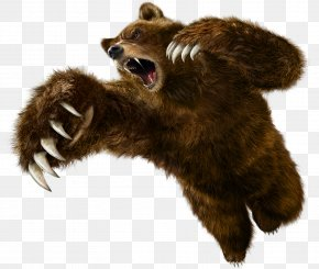 Bear - Tekken 6 Tekken 5: Dark Resurrection Tekken Tag Tournament 2 PNG
