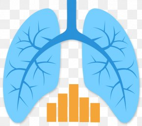 Lungs - Lung Transplantation Mesothelioma PNG