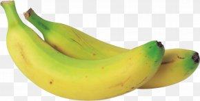 Banana Image - Banana Green Clip Art PNG