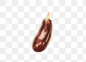 Nepenthes Bean - Food Plant Legume Eggplant Bean PNG