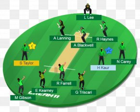 Cricket - India National Cricket Team ICC Under-19 Cricket World Cup Sydney Thunder Ford Trophy Northern Districts Cricket Team PNG