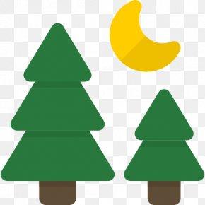 Forest - Fir Forest Tree Clip Art PNG