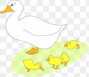 Goose - Mother Goose Duck Clip Art PNG