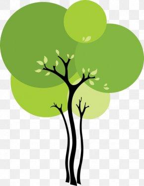 Plant Stem Branch - Green Tree Leaf Clip Art Plant PNG