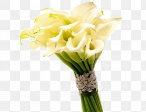 Yellow Taro Flower Bouquet Photography Photos - Arum-lily Flower Bouquet Callalily Wallpaper PNG