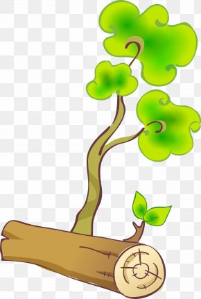 Tree - Branch Trunk Tree Clip Art PNG