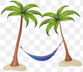 Coconut Tree Vector Material Summer - Coconut Tree PNG