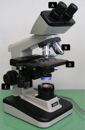 Microscope - Light Optical Microscope Optics Magnification PNG