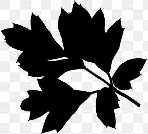 M Clip Art Plant Stem - Maple Leaf Black & White PNG