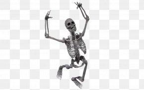 Skeleton At Desk - Human Skeleton Skull Clip Art PNG