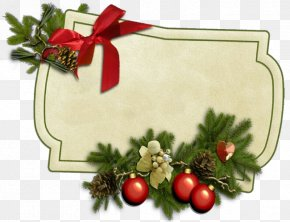 Conifer Christmas Ornament - Christmas Decoration PNG
