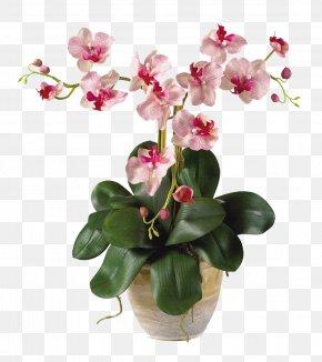Flower Pot - Moth Orchids Artificial Flower Plant Stem PNG