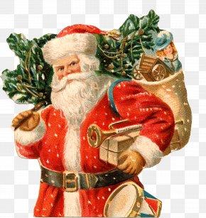 Santa Claus - Santa Claus Christmas New Year Holiday Ded Moroz PNG