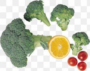 Broccoli - Chinese Broccoli Vegetarian Cuisine Vegetable Brassica Oleracea Var. Italica PNG