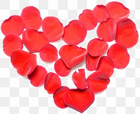 Valentine's Day - Valentine's Day Love Heart Red Clip Art PNG