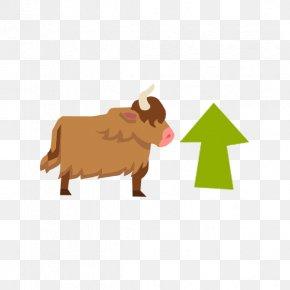 Yak - Cattle Domestic Yak Goat Sheep Animal PNG