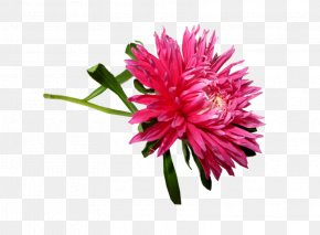 Aster Artificial Flower - Artificial Flower PNG