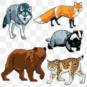 Forest Animals - Wildlife Drawing Animal Clip Art PNG