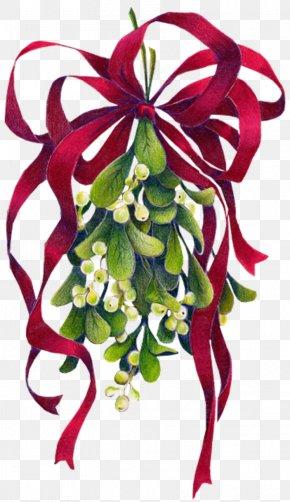 Mistletoe - Mistletoe Christmas Phoradendron Tomentosum Clip Art PNG