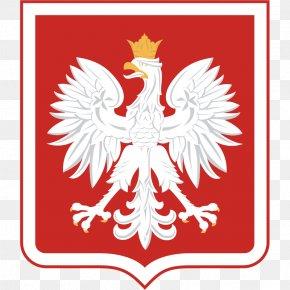 Eagle - Coat Of Arms Of Poland Polish People's Republic National Emblem Second Polish Republic PNG