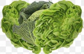 Lettuce - San Luis Valley Organic Food Vegetable Broccoli PNG