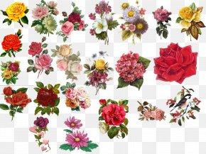 Flower Vintage - Flower Floral Design Clip Art PNG
