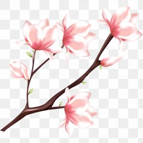 Peach Blossom - Peach Watercolor Painting PNG