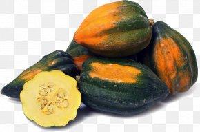 Acorn Squash Image - Gourd Acorn Squash Cucurbita Winter Squash Pumpkin PNG
