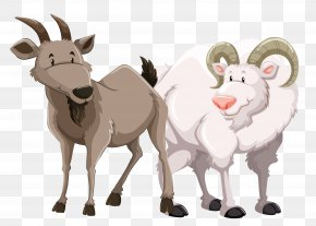 Vector Goat Sheep Material - Goat Royalty-free Diagram Illustration PNG