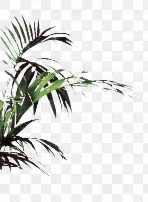 Plant - Plant Euclidean Vector Icon PNG