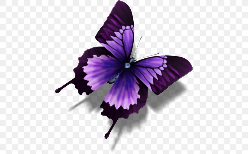 Bộ sưu tập cánh vẩy 6 - Page 4 Butterfly-morpho-achilles-morpho-portis-computer-icons-png-favpng-dAV6s7f9HitcdEdbrgJgpSU1J